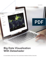 Big Data Visualization With Datashader Whitepaper