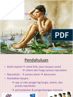 kesehatan-reproduksi-remaja