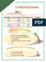 67 Definit- & Indefinitpronomen.pdf