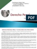 Derechpprocesalpenalsistemasygarantias 150830011441 Lva1 App6892