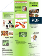 Leaflet Kolestrol