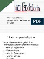 k2 - Anatomi Endocrine