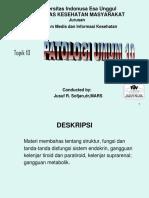 Endokrin.pdf