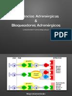 Adrenergicos.medicina.2018