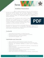 analisis_financiero.pdf