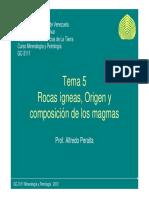 TIPOS de Magmas