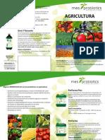 2 Díptico Agricultura CAST