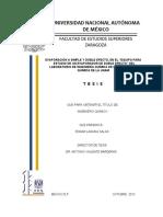 tesis_laguna_salas.pdf