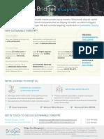 Bridges U.S. SGF Forestry Overview_Blueprint v3.pdf