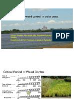 Dr. Steve Shirtliffe - Managing Weeds in Organic Pulse Crops