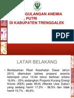 Anemia Ttd (Maret 2018)