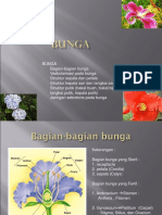 Bunga_bag_fertil.ppt
