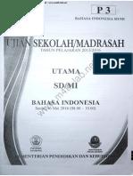 UN 2016 SD B ind.pdf