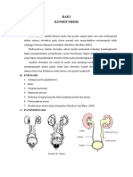 HIDRONEFROSIS 1 LP .docx