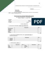 PEFE.pdf