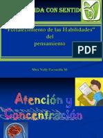 2. Atencion Concentracion