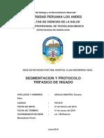 segmentacion y protocolos higado.docx