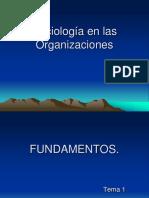 Sociología de las Organizaciones.ppt