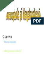 Metropole Si Megalopolisuri