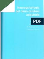 neuropsicología del daño cerebral adquirido -  ríos-lago.pdf