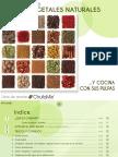 RECETAS HORCHATA.pdf