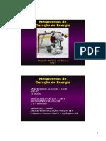 Aula 3 - Metabolismo Energético.ppt.pdf