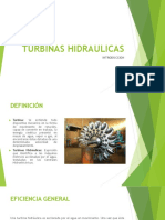 TURBINAS.HIDRAULICAS.pdf