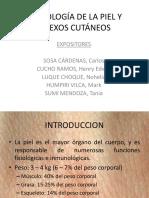 Semiología de la piel y anexos cutáneos