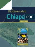 Diversida de Chiapas Murcielagos.pdf