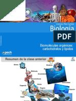 Clase 3 Biomoléculas Orgánicas Carbohidratos y Lípidos