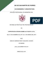 Informe Percy Asenjo