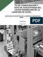 Informe Final Cluster Del Papel Aird