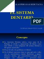 INTRODUCCION Y CARACTERISTICAS SISTEMA DENTARIO.ppt