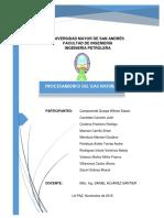 Procesamiento Del Gas Natural-Petroquimica