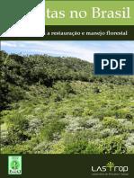 Florestas No Brasil