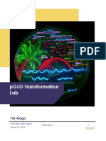 pglo pdf
