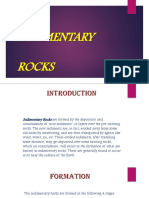 Sedimentary Rocks.pptx