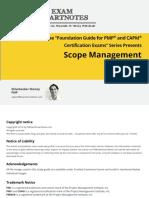 PMP scope