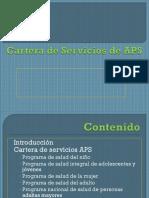 Cartera de APS (Scrib)
