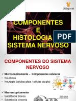 COMPONENTES+E+HISTOLOGIA+DO+SISTEMA+NERVOSO.pdf