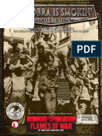 Brazilian-Intelligence-Briefing.pdf