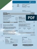 01558417209844235.pdf