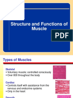 Lec2 Muscle