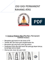 335135051-9-Morfologi-Gigi-Permanent-Rahang-Atas.pptx