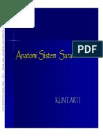 anatomi sistem saraf.pdf