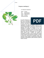 machinga.pdf