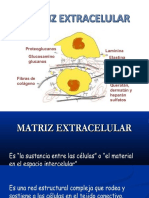 MATRIZ E.pptx