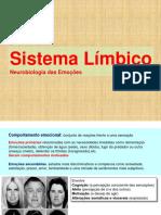 4 Sistema Limbico