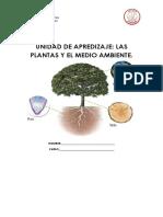 CIENCIAS UNIDAD LAS PLANTAS 3º BÁSICO