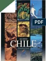 Guia Turística Chile
